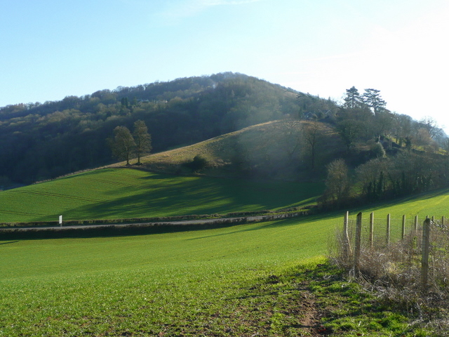 View to Coppet Hill - geograph.org.uk - 1181095