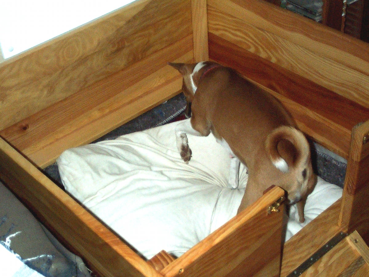 Dog Breeding Box