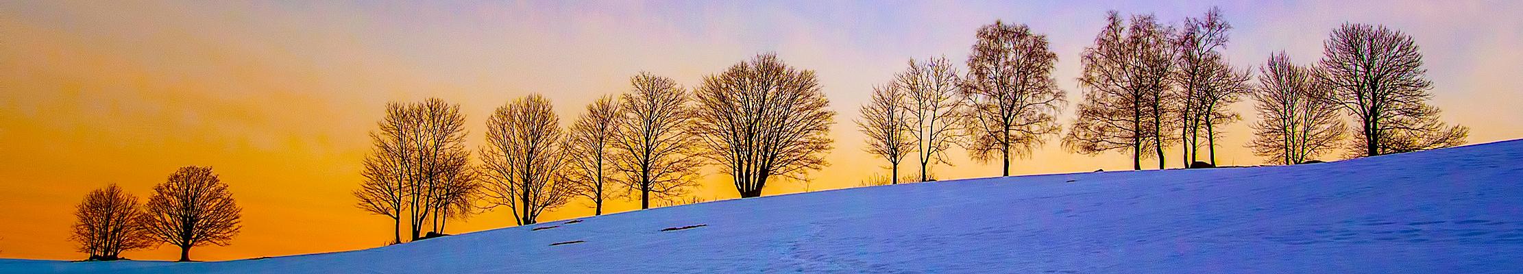 24 февраля (09 марта) 2015. Лучаны над Нисой, Чехия.