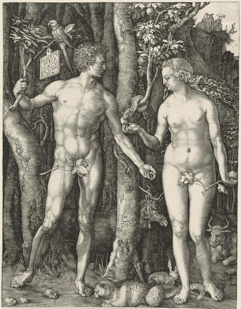 Адам и Ева, резцовая гравюра на меди, 1504 г
