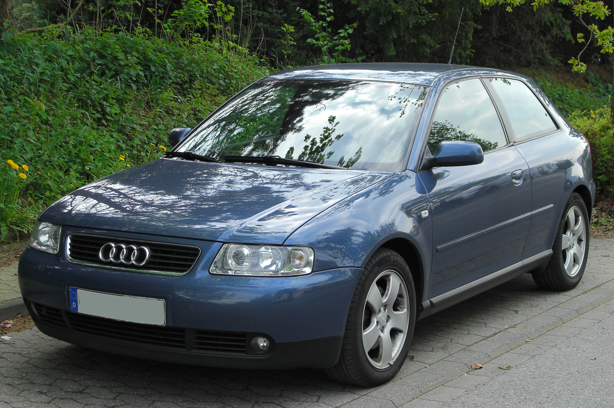 File Audi A3 I 1 9 Tdi Facelift Front 20100509 Jpg