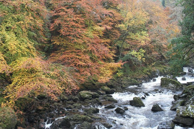 Autumn colours at the Hermitage - geograph.org.uk - 1585706