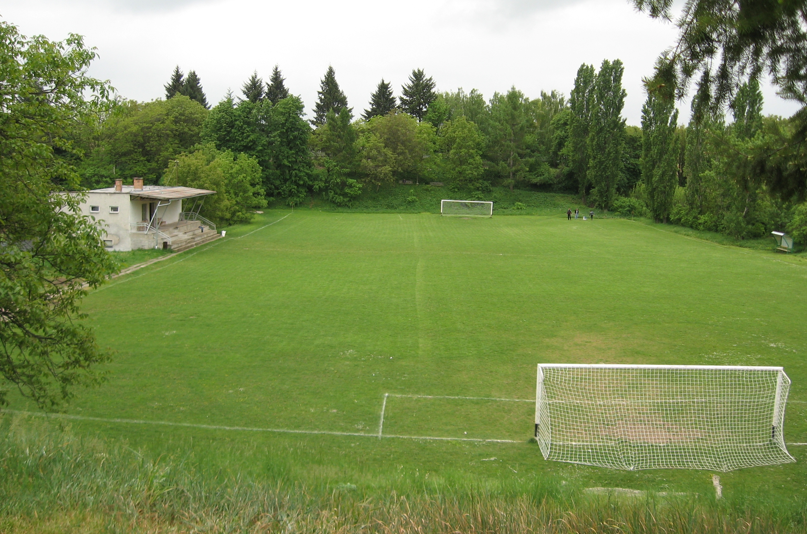 1be41ea0a File:Borovské futbalové ihrisko v zajatí zelene - panoramio.jpg ...