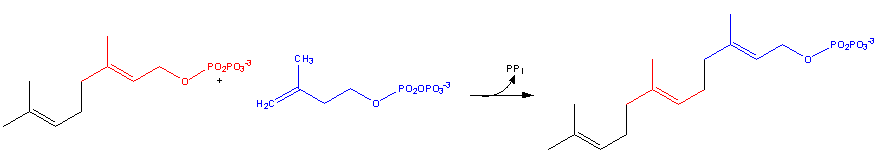 Resim:Cholesterol-Synthesis-Reaction9.png