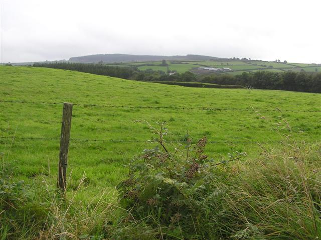 File:Creevy Townland - geograph.org.uk - 1460511.jpg