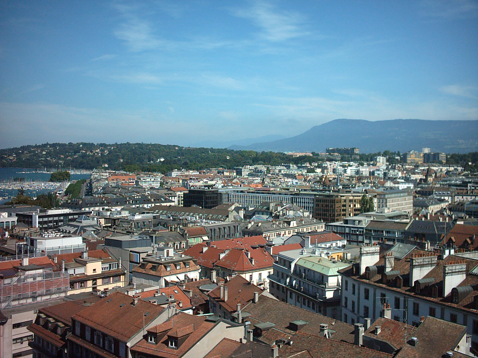 A picture of Eaux-Vives, a popular neighborhood in Geneva, that demonstrates the beautiful views.