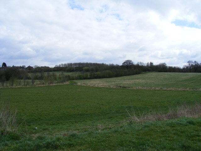 Fryent Country Park - geograph.org.uk - 1224435