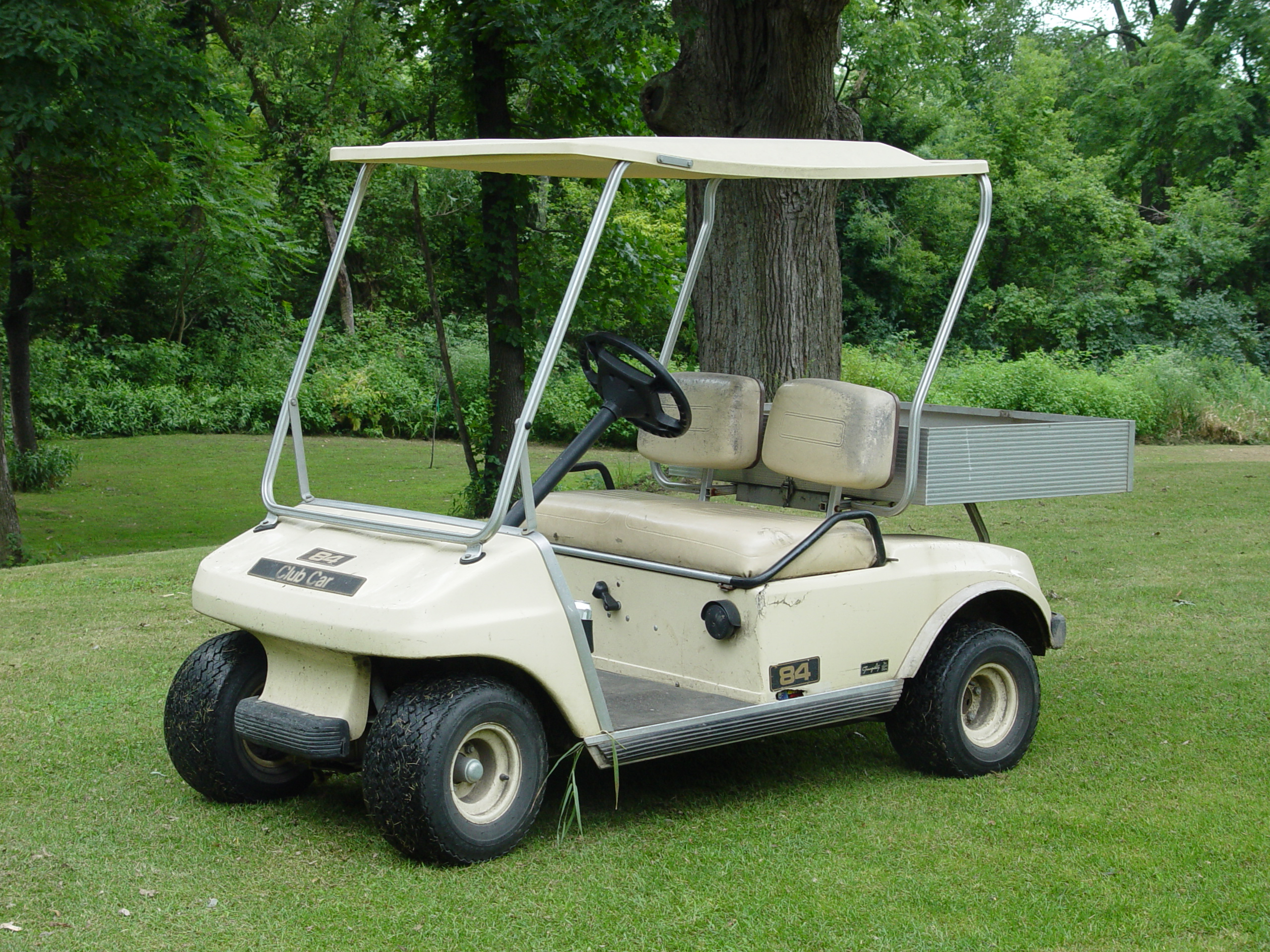 Unknown but potential golf cart issues