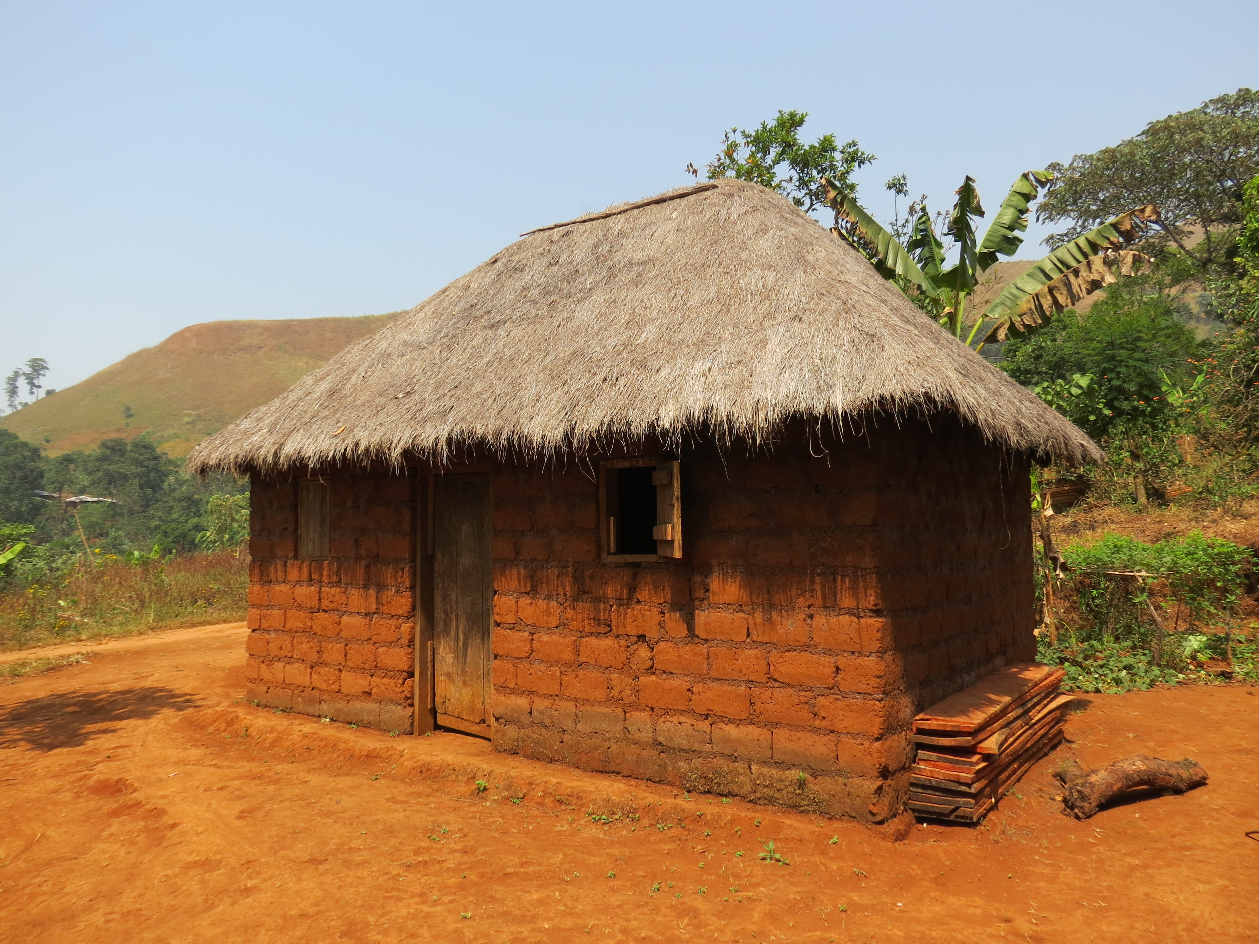 FileHouse Made Of Mud Bricks With A Thatched Roof In Belo 2