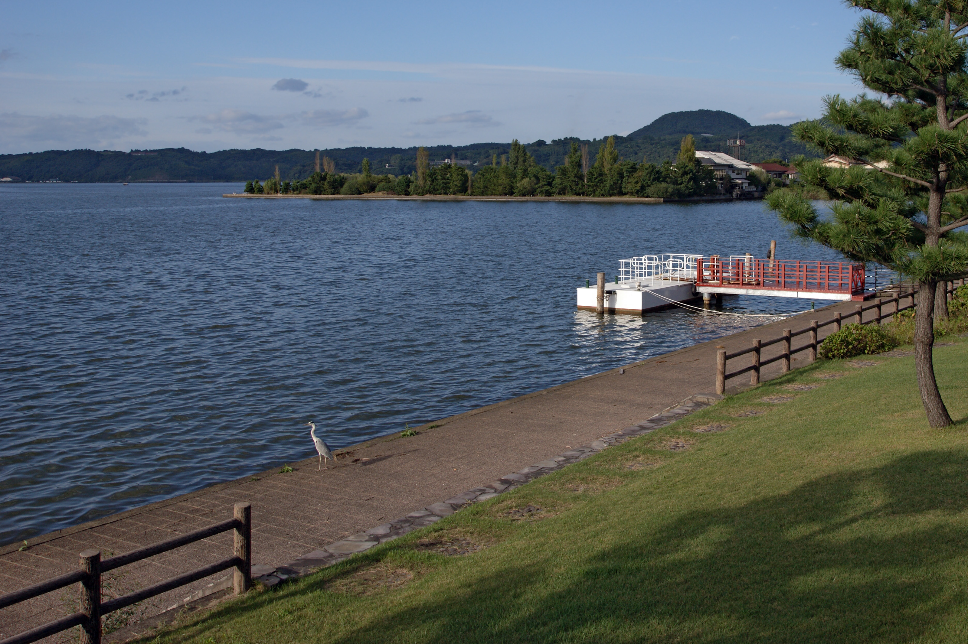 island lake girls Camps include sandy island family camp, north woods camp for boys and pleasant valley camp for girls play, learn and grow on beautiful lake winnipesaukee in new .