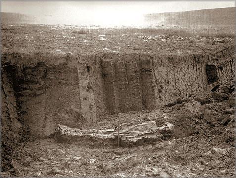 File:Nederfrederiksmose Man 1898.jpg