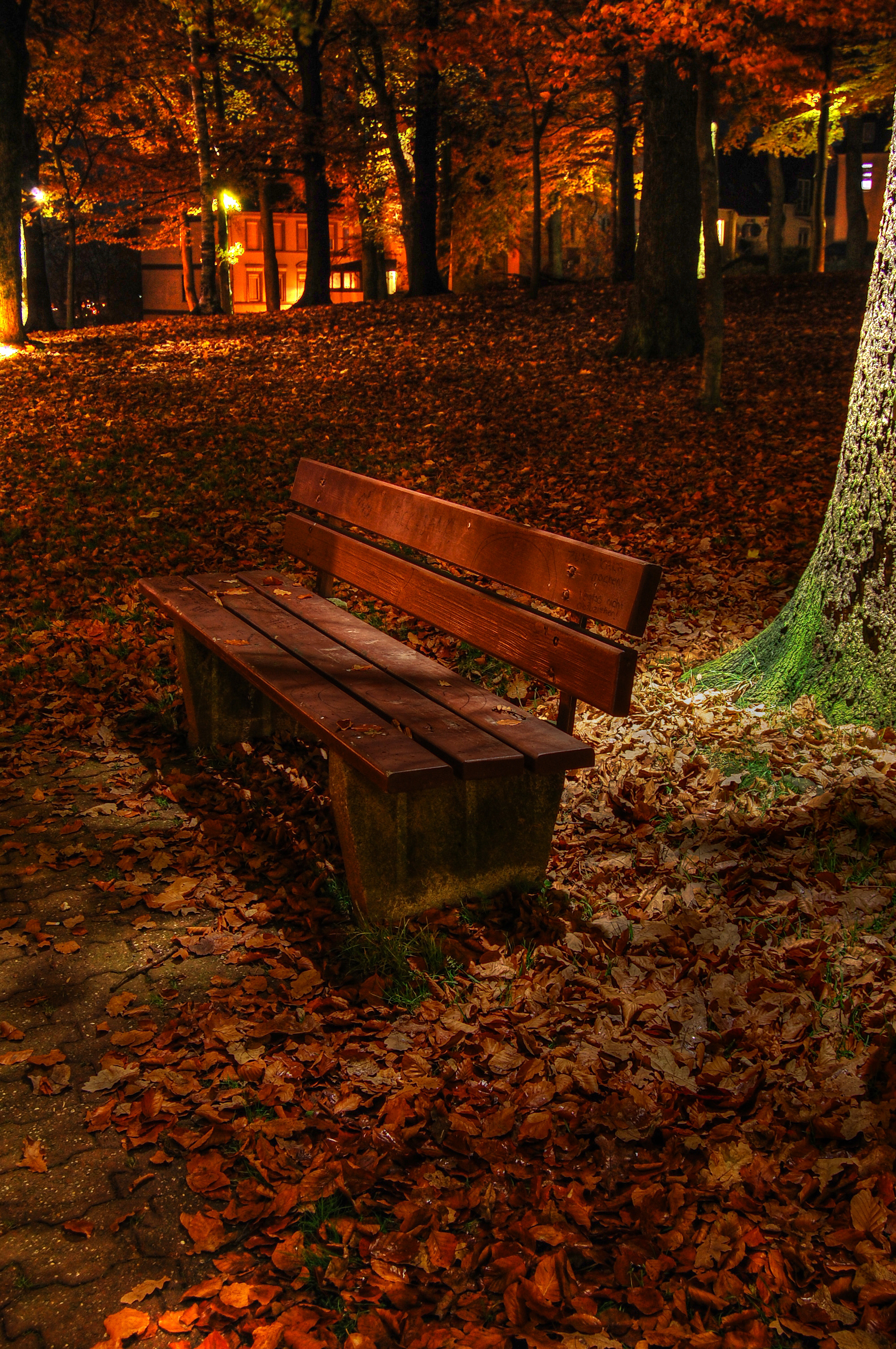 File Park Bench At Night Hdr Ludenscheid Germany Jpg Wikimedia Commons