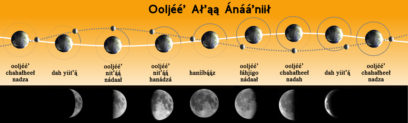 8 Moon Phases In Order