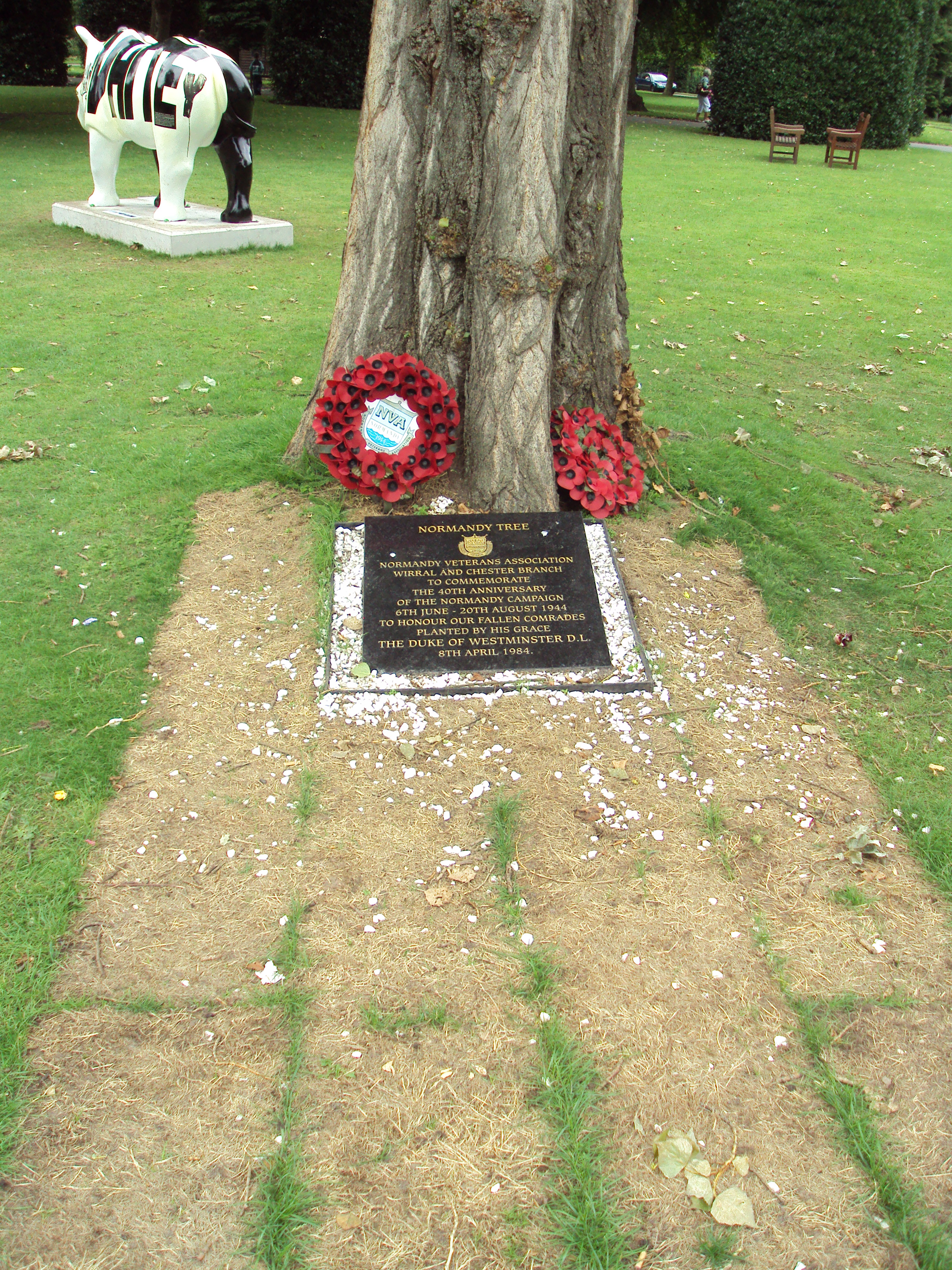 file plaque at base of normandy memorial tree grosvenor park