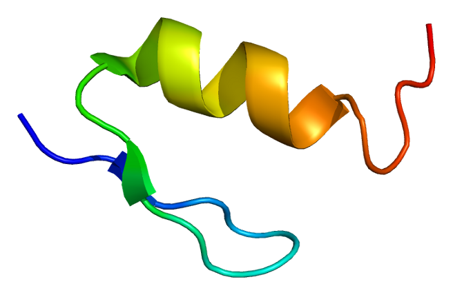 mesotheliama