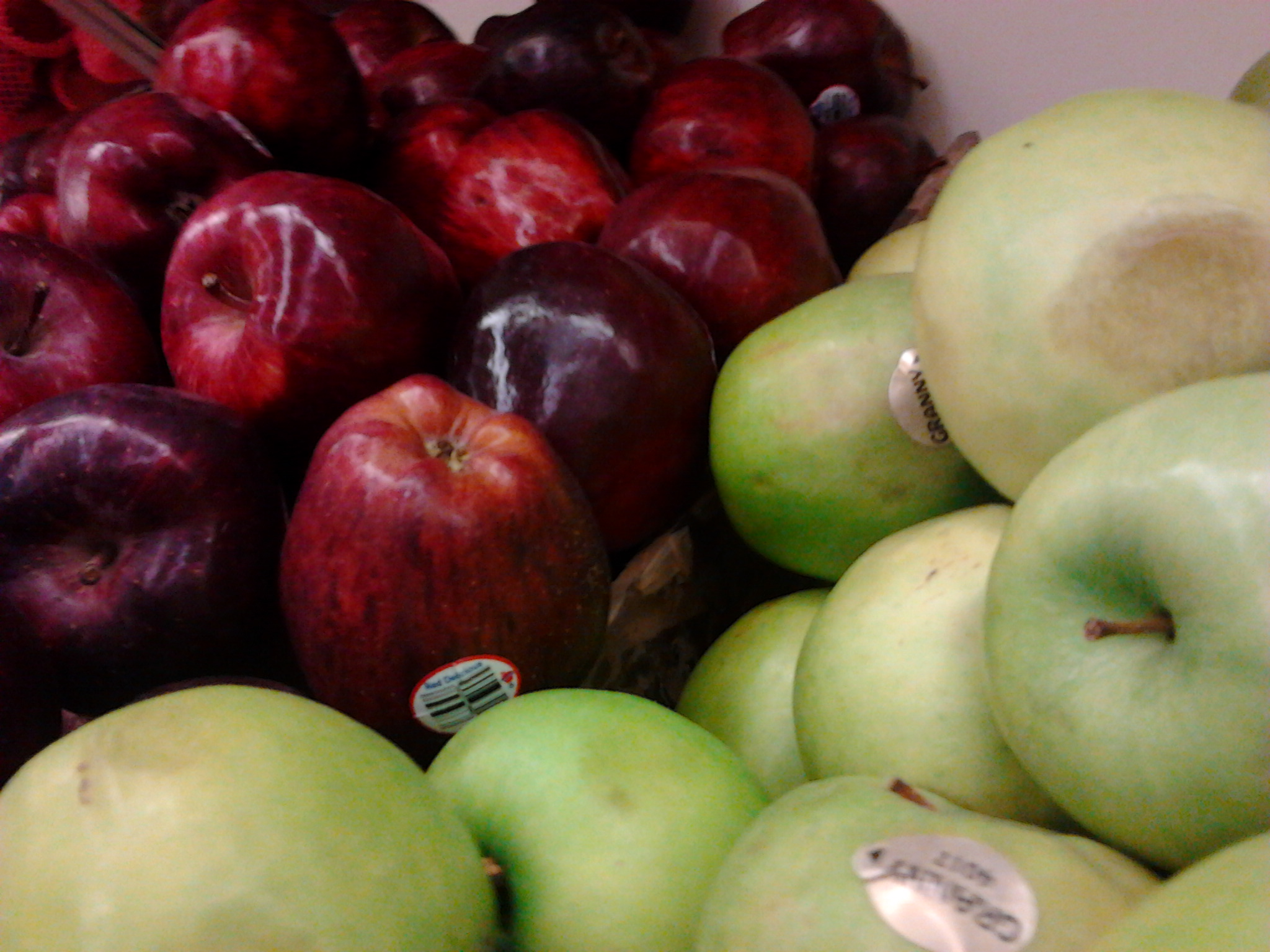 Red And Yellow Apples Name apple - wikipedia, the free encyclopedia