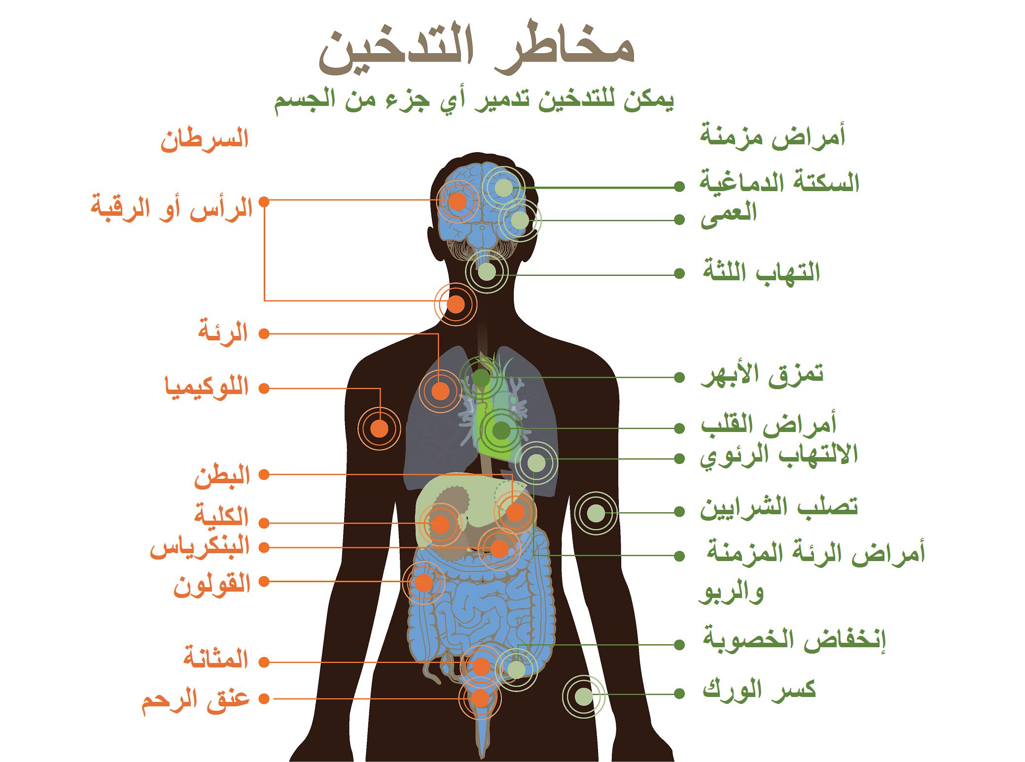 الآثار الصحية للتدخين ويكيبيديا