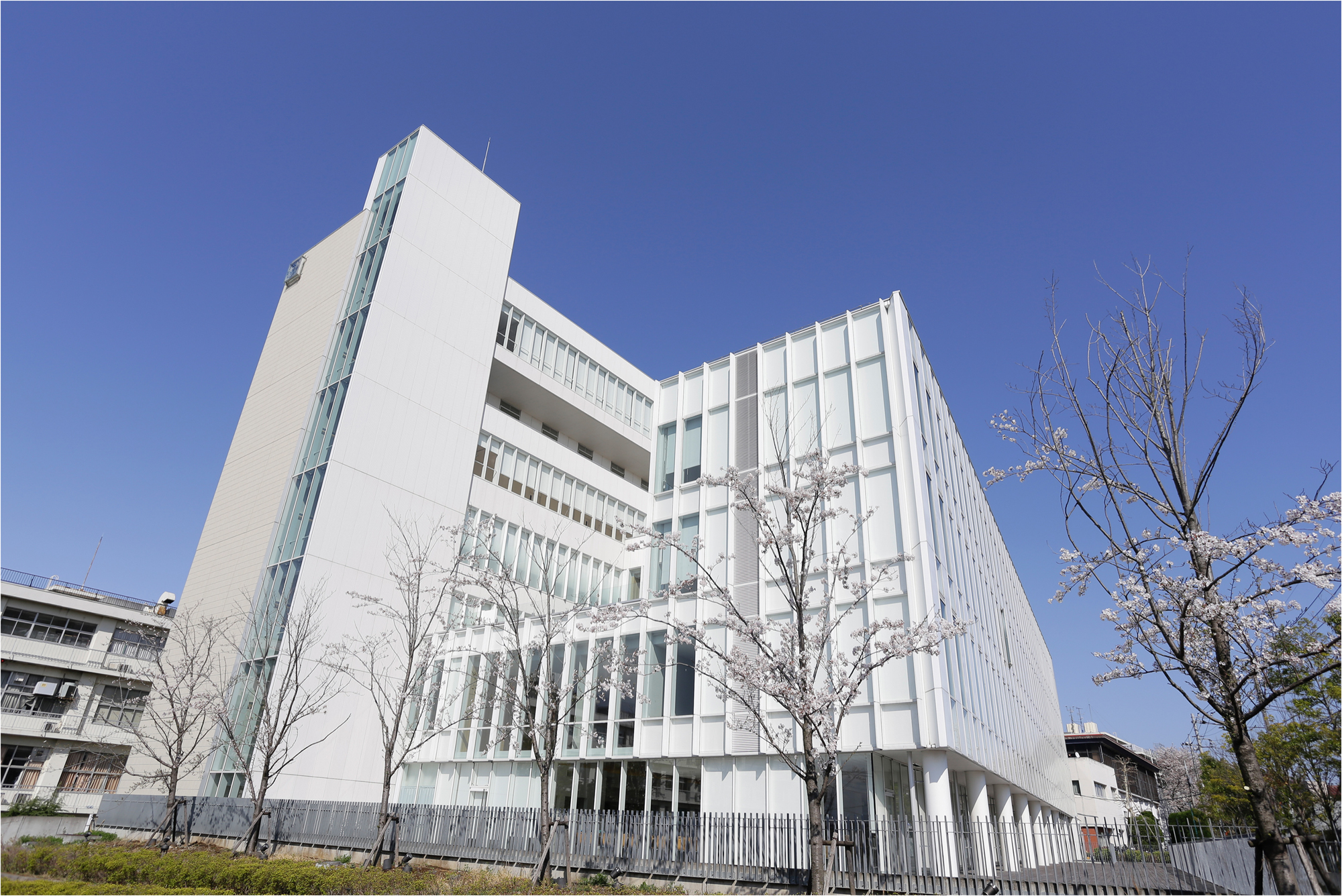 マリアンナ 西部 聖 横浜 病院 市