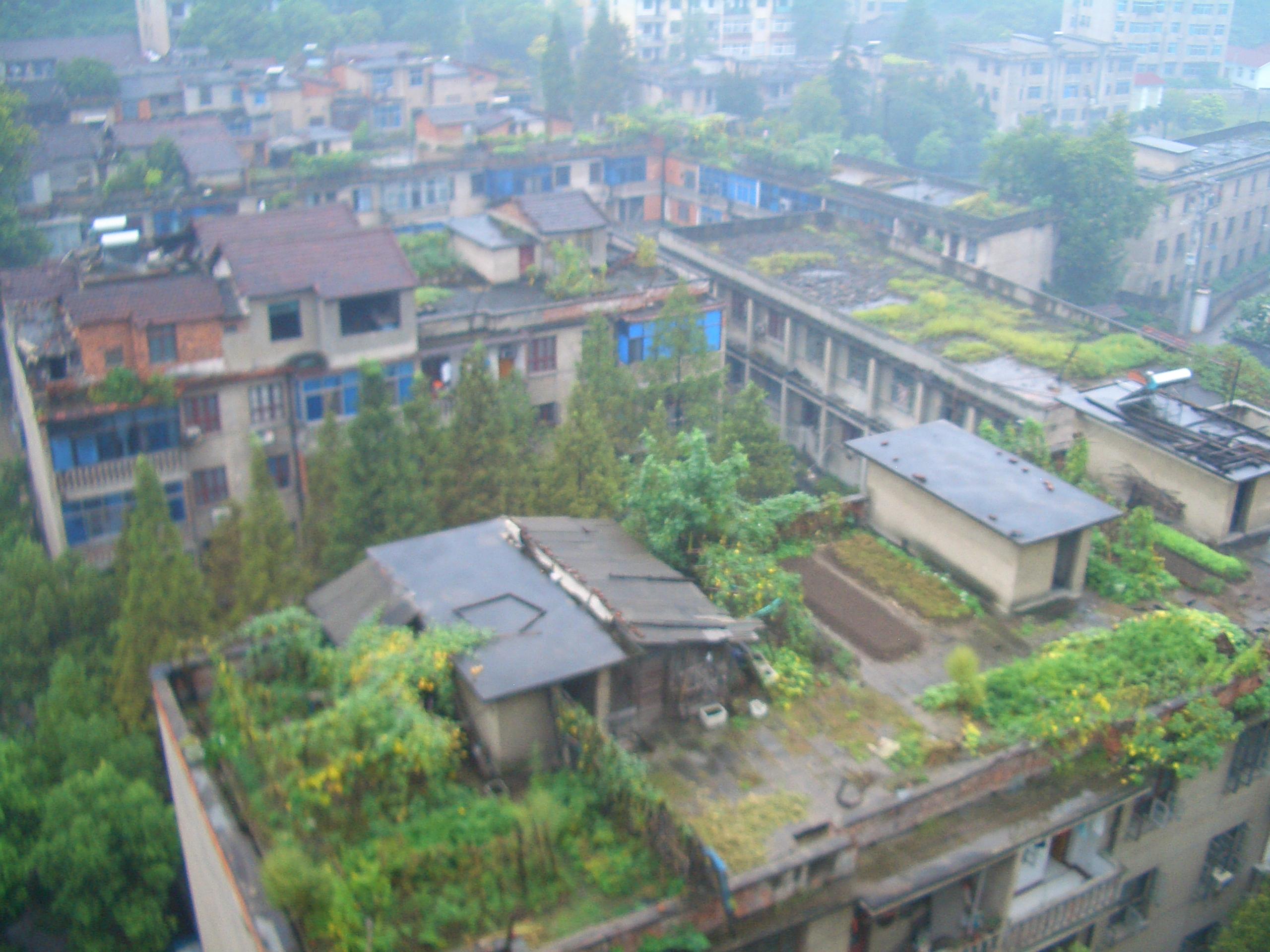 Toits verts dans le centre ville Tongyang