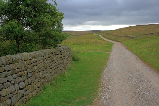 Track Over Grimwith Fell - geograph.org.uk - 943583