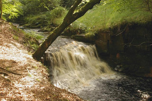 Waterfall on River Roddlesworth - geograph.org.uk - 505895