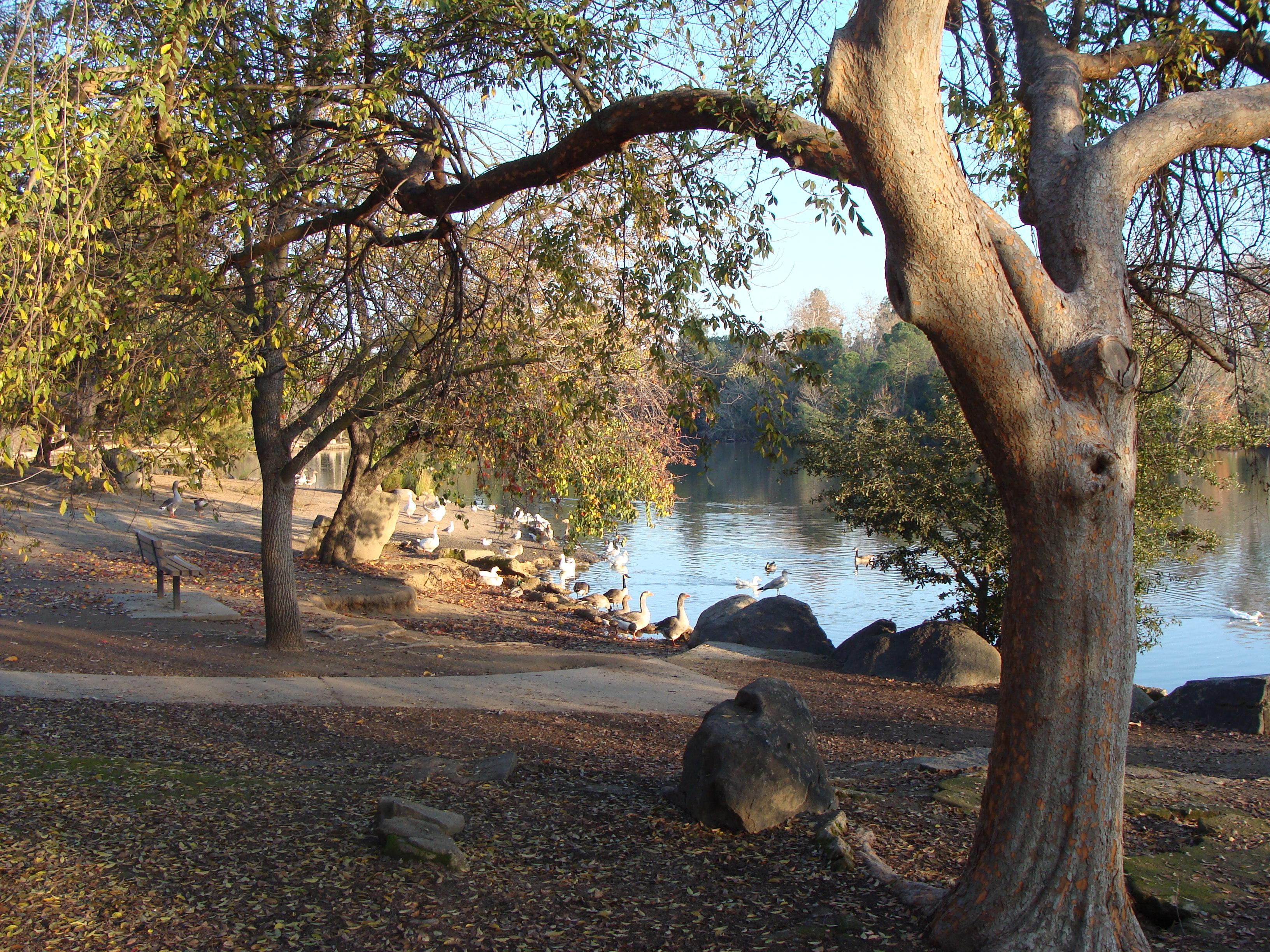 River Park Fresno Homes