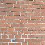 2ch-brick.JPG