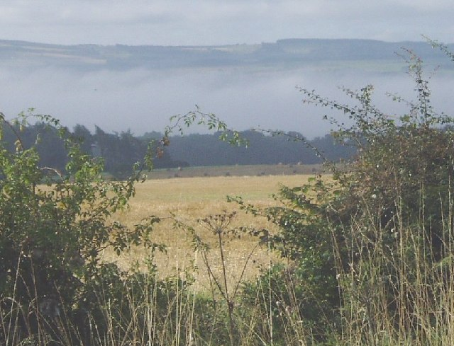 File:Autumn mist in Tyne Valley from Bearl - geograph.org.uk - 79337.jpg