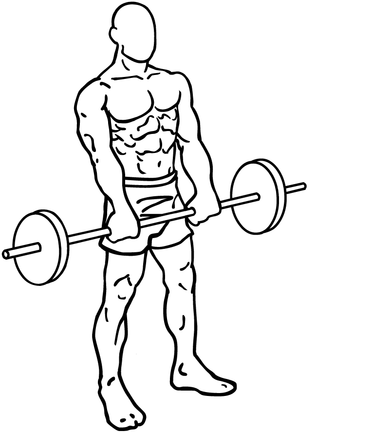 File:Barbell-front-raises-2.png - Wikipedia, the free encyclopedia