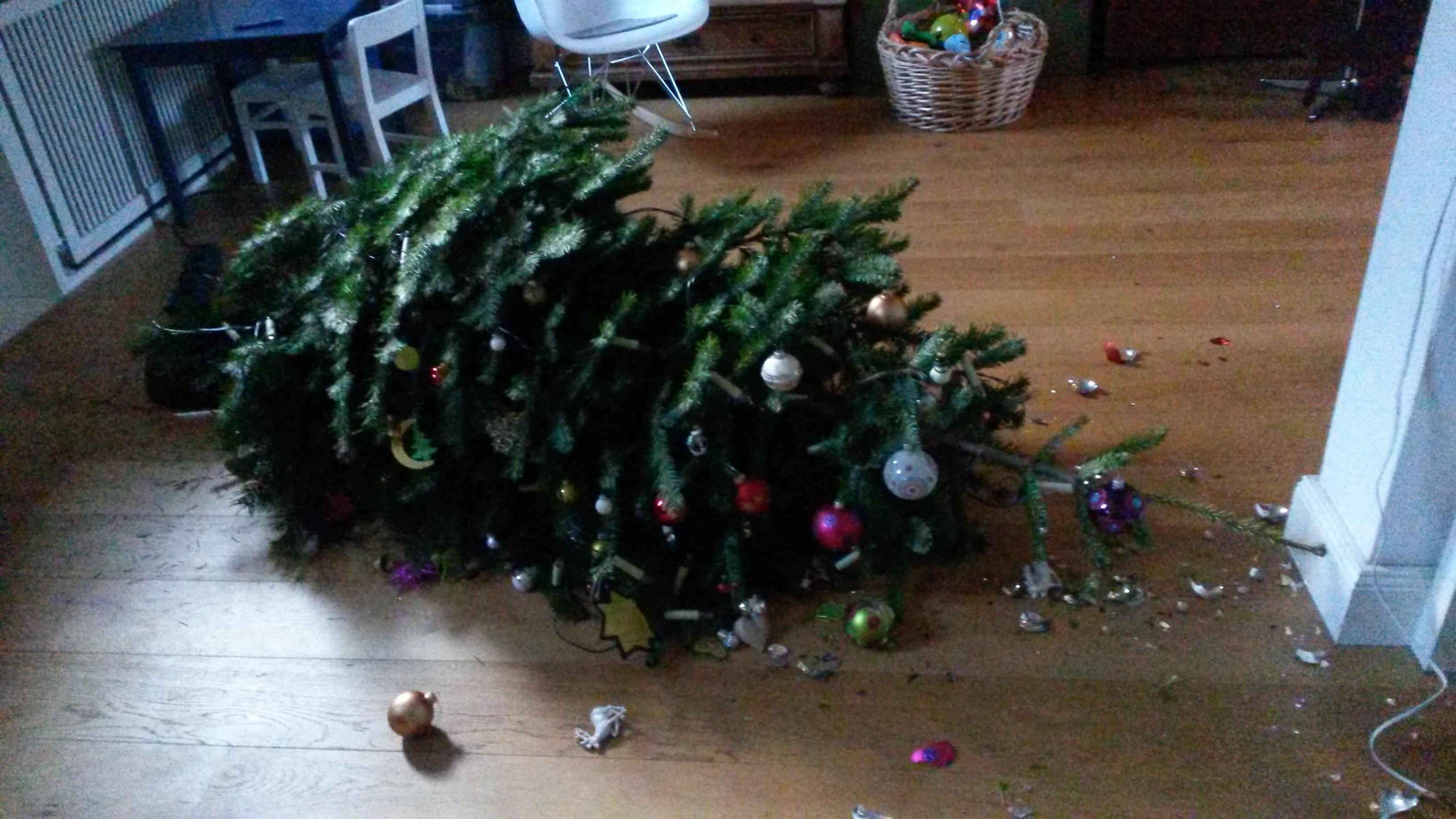 File:Broken christmastree.jpg - Wikimedia Commons