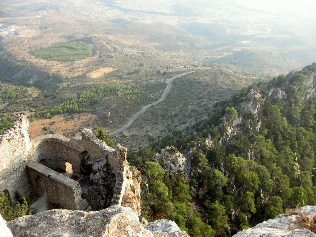 Cipro Wikipedia