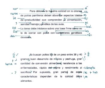 Depiction of Corrector de textos