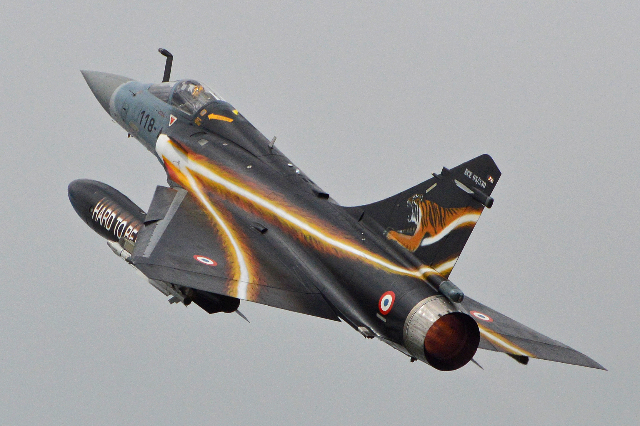 File:Dassault Mirage 2000-5F '51 - 118-AS' 'Hard to be Humble' (14767945661).jpg - Wikimedia Commons