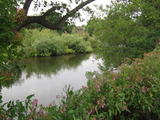 Derwent River near Allestree - geograph.org.uk - 214318