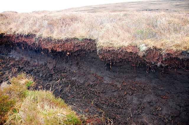 Exposed peat - geograph.org.uk - 1226373