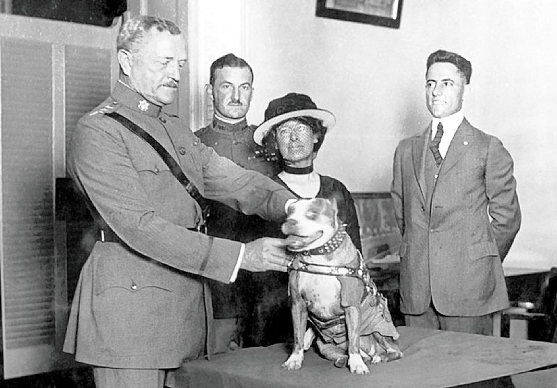 Gen. John Pershing awards Sergeant Stubby with a medal