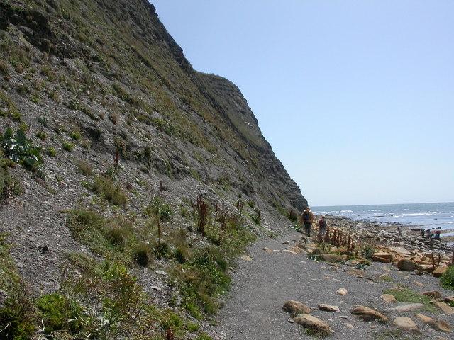 Kimmeridge Bay, cliff - geograph.org.uk - 1411700