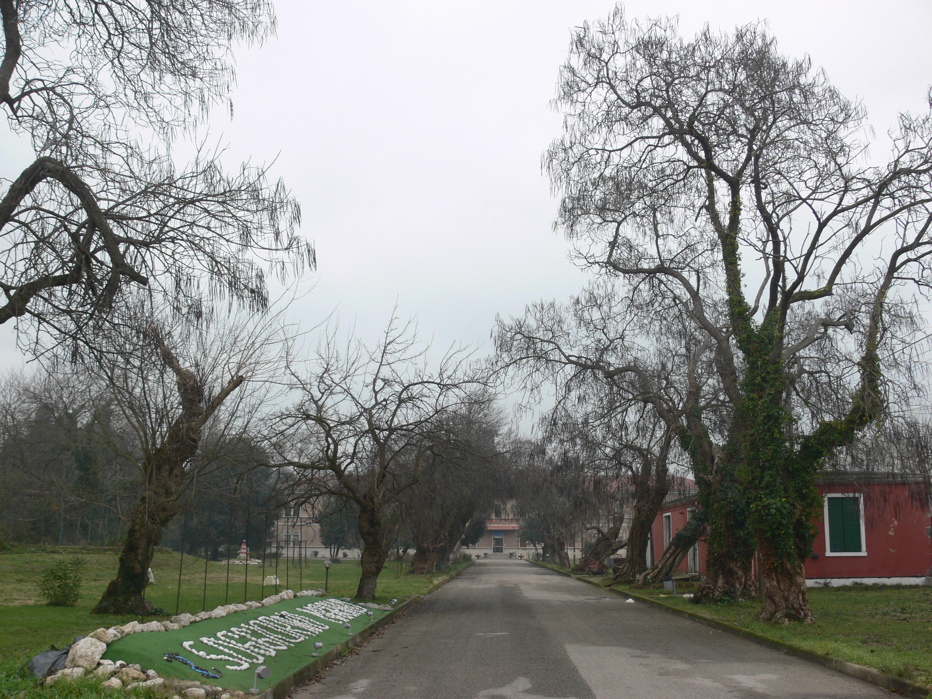 https://upload.wikimedia.org/wikipedia/commons/5/59/Lido_di_Venezia_-_Residence_Soggiorno_Marino%2C_Marina_Militare_-_entrance_path.JPG