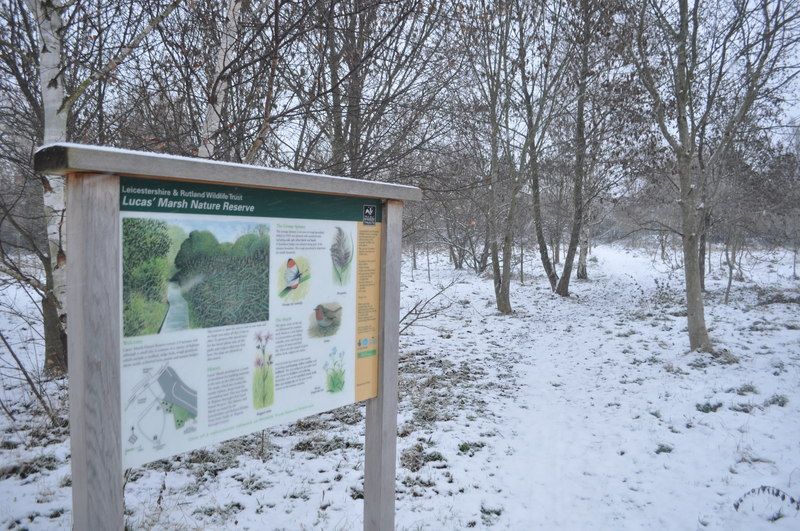 Lucas Marsh Nature Reserve - geograph.org.uk - 2182154