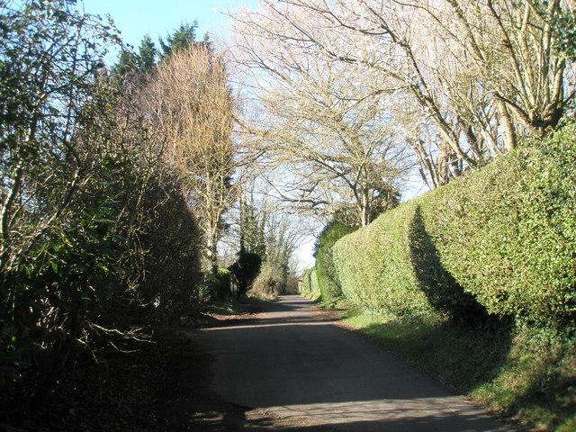 File:Mill Lane, Langstone - geograph.org.uk - 688190.jpg