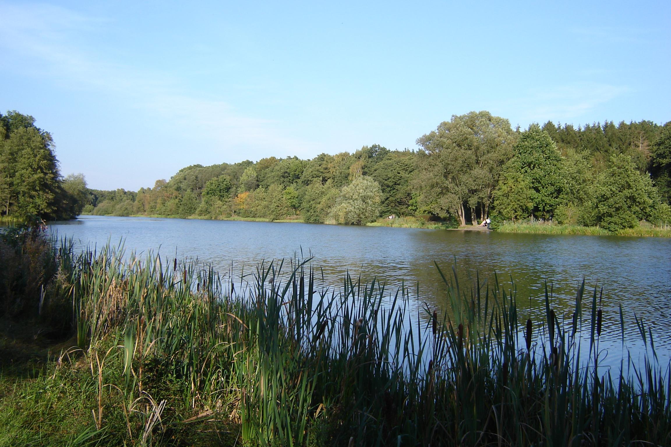 Heidesee in Müden an der Örtze, Lüneburger Heide - Quelle: WikiCommons