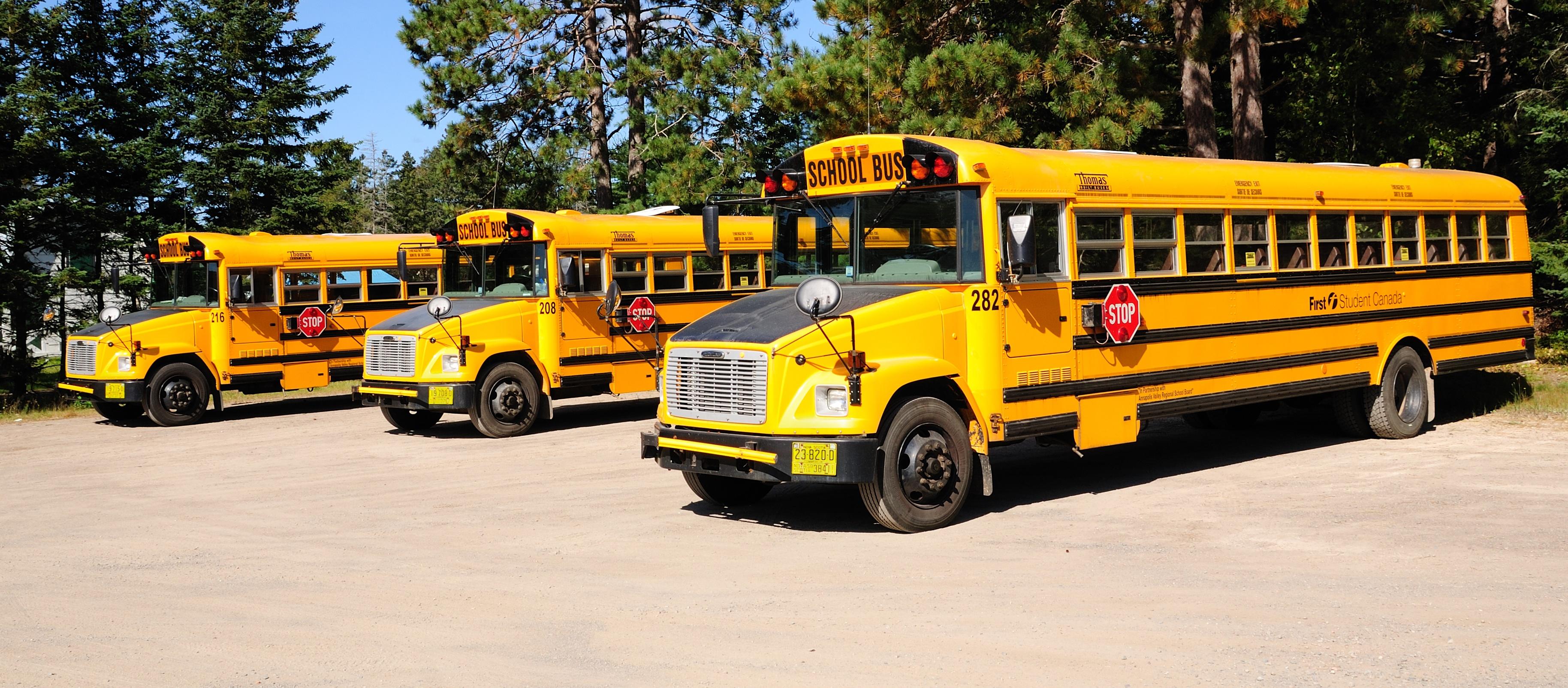 School Bus Car Wash Video