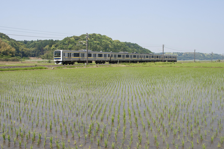 https://upload.wikimedia.org/wikipedia/commons/5/59/Narita_Line_in_Katori_City_02.jpg