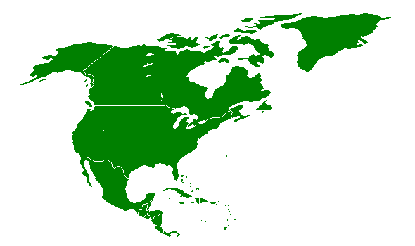 Датотека:North-America (transparent).png
