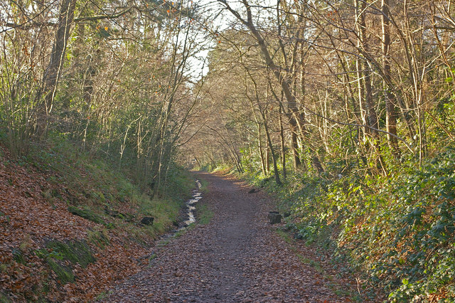 Old railway route - geograph.org.uk - 1093766