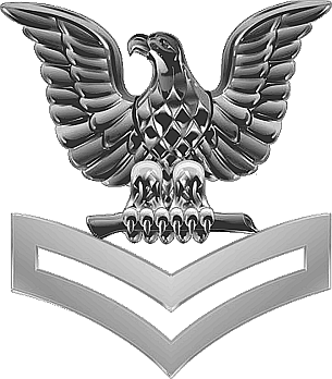 File:PO2 Collar Silver USN.png