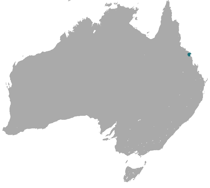 The average litter size of a Proserpine rock-wallaby is 1