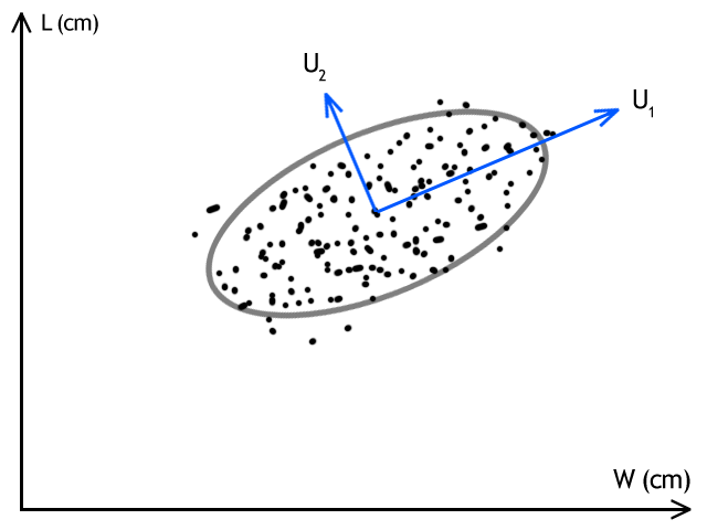 Filesvd Graphic Exampleg Wikimedia Commons