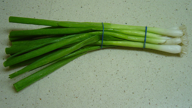File:Scallion.jpg
