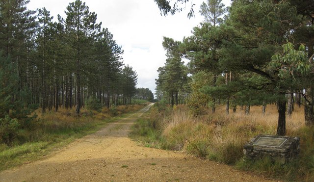 Wareham Forest Walk - Decoy Heath - geograph.org.uk - 1550389